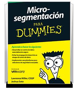 38329_MicroSegmentacionDummies.png